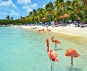 El Caribe te guarda sus más encantadores secretos para cuando puedas descubrirlos